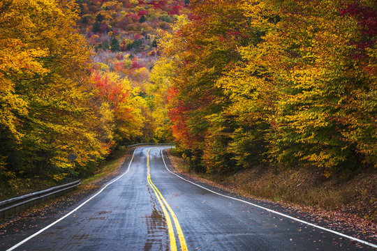 Brilliant fall floiage colors along New HAmpshire highway.