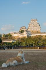 姫路城と犬