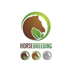 Horse Breeding Logo Design Shape Circle