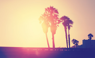 Vintage stylized picture of palms silhouettes at sunset.