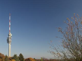 St. Chrischona im Herbst