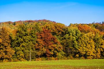 farbenfroher Herbst