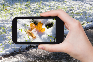 picture of of first snow at lawn on smartphone
