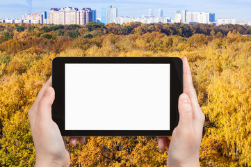 tablet pc with cut out screen and yellow forest