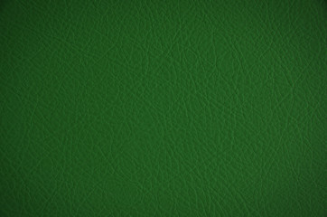 green leather texture, useful as background