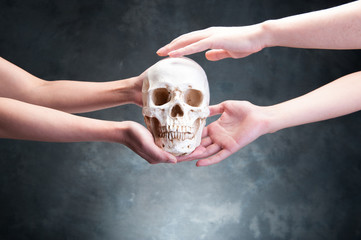 頭蓋骨を持っている人の手