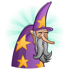 Wise Old Bearded Wizard Cartoon Character