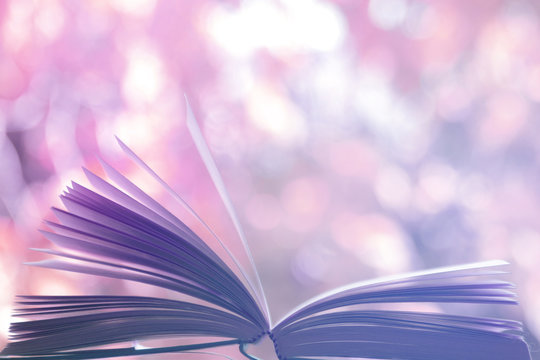 open book outdoors with defocused or blurred  background with attractive purple color tones and bokeh