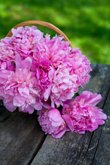 bunch of peonies in a basket on wooden background