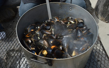 A Hot Pot of Mussels