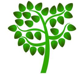 albero con foglie verdi su sfondo bianco