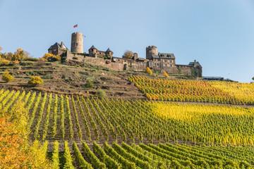 Mosel - Burg Thurant mit Weinberg