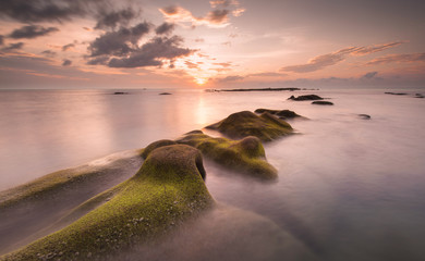 green moss as foreground with stunning sunset