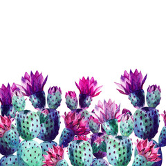 Aluminium Prints Watercolor Nature Watercolor cactus