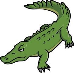 Crocodile Illustration Design