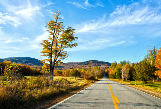 New England during Fall Time: Scenic Drive through Maine