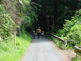 山歩きを楽しむ家族 親子