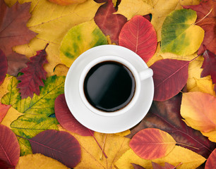 Cup of coffee over autumn leaves  background