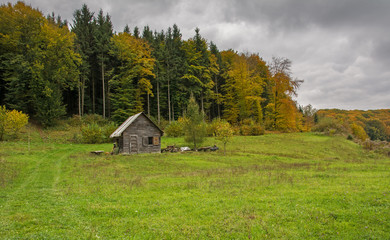 Abandoned wooden chalet near the forest under an autumn cloudy sky