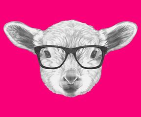 Portrait of Lamb with glasses. Hand drawn illustration.