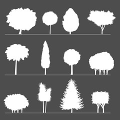 Silhouettes of trees and bushes. Silhouettes of different shrubs and trees stylized geometric shapes.