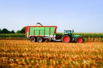 Wall Mural - Traktor mit Erntewagen bei der Maisernte