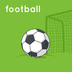 Soccer ball on a field.