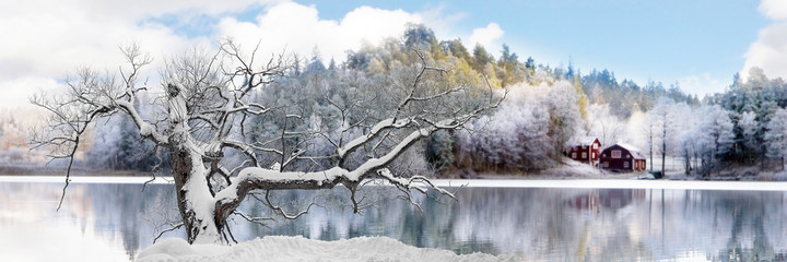 Wall Murals Dark grey Tree in winter landscape