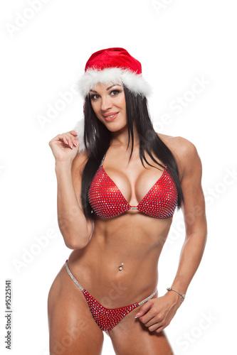 Sexy santa ladies