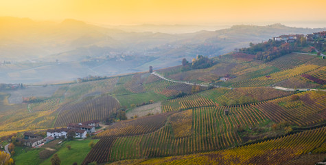 Wall Mural - Vista panoramica delle colline e dei vigneti delle Langhe in autunno