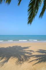 Autocollant pour porte Caraibes Tropical beach with coconut palm at summer time