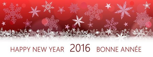 Happy New Year 2016 Bonne Année