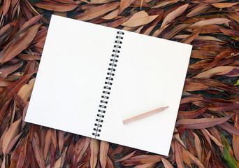 notebook on dry leaf background