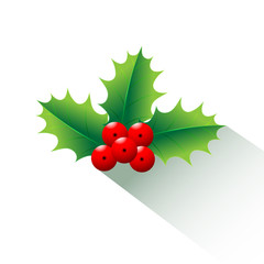 Holly Christmas  and long shadow is vector illustration. Ideal for the decoration of the Christmas season.