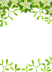 Christmas background with white poinsettia,  mistletoe and holly leaves decoration elements. Vertical banner with copy space