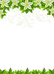 Christmas background with white poinsettia and holly leaves decoration elements.