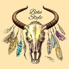 the skull of a bull