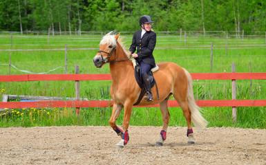Woman horseback riding on riding arena