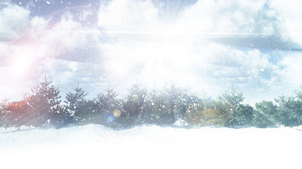 3D snowy fir tree landscape