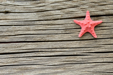 Star fish on wooden background