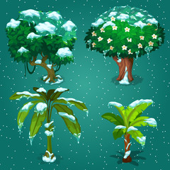 Four tropical plants in the ice on a green background