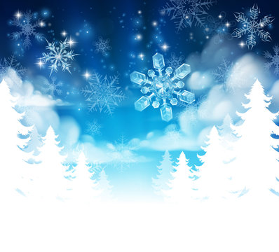 Winter Forest Background Header