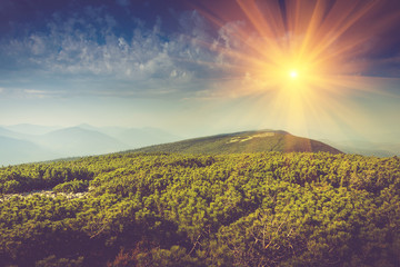 Mountains top covered by forest  and sky with clouds in sunlight. Wall mural