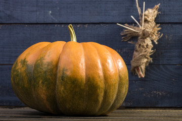Still-life pumpkin and voodoo doll