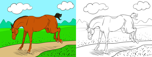 Coloring page with a horse and background