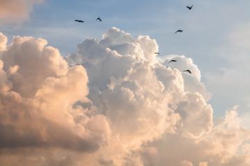 white cloud on sky