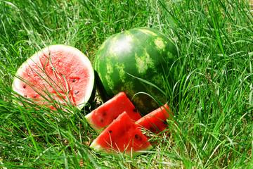 Fresh watermelon over green grass background