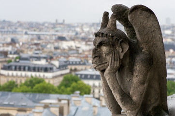 Gargoyle of Notre Dame Cathedral,paris,france(ノートルダム大聖堂のガーゴイル)