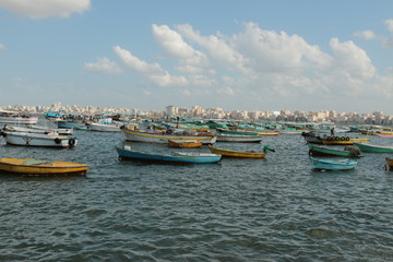 Commercial small fishing boats moored at the mina sharkia harbour in Alexandria 6035