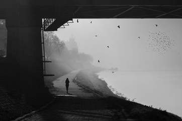 Silhouette of the girl walking beside river on misty sunny autumn day